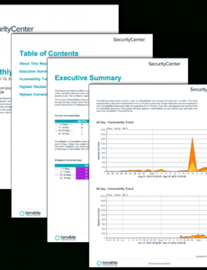 monthly executive report  sc report template  tenable® security monthly report template excel