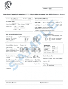 printable functional capacity evaluation form  fill online printable functional capacity evaluation report template example