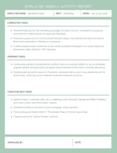 editable employee weekly activity report employee weekly report template sample