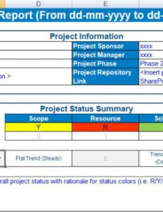 free project status report template excel  free excel program status report template doc