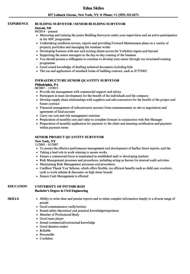 free surveyor senior resume samples  velvet jobs surveyors report template
