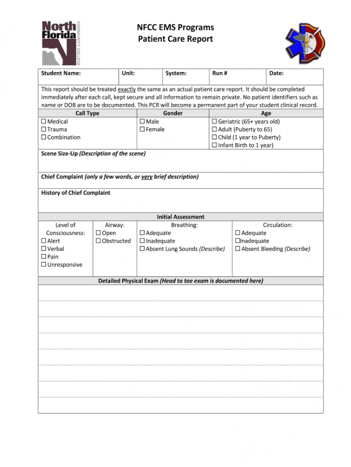patient care report template doc  fill out and sign printable pdf template   signnow patient care report narrative template excel