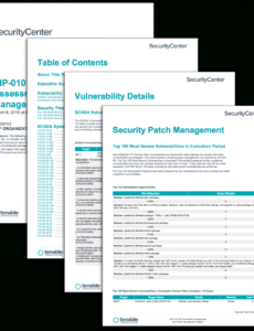 sample cip010 r3 vulnerability assessment and patch management vulnerability assessment report template pdf