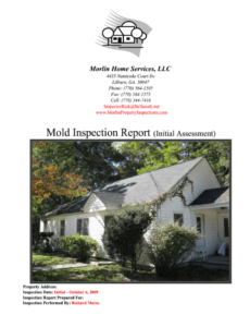 Printable Mold Inspection Report Template Doc Sample