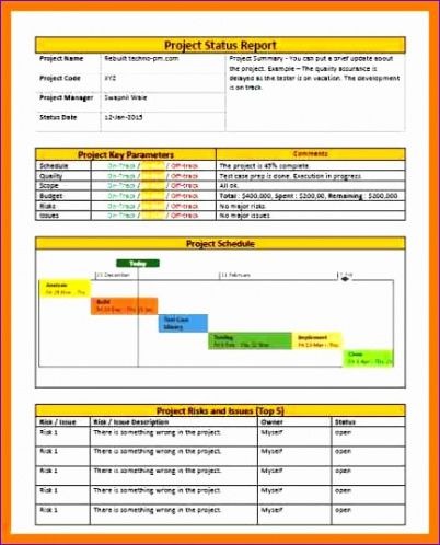 Best Monthly Project Status Report Template Doc Sample