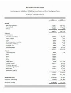 Best Non Profit Monthly Financial Report Template Excel Example