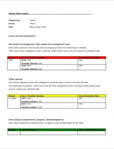 Professional Software Testing Status Report Template Doc Sample