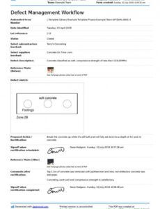 Editable Defects Report Template  Example