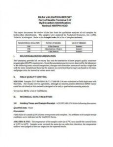 Free Software Validation Report Template Word Sample