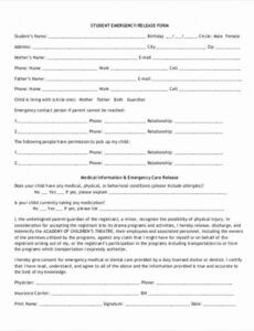 Emergency Room Release Form Template  Example