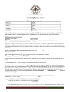 Printable Veterinary Release Form Template Pdf Example