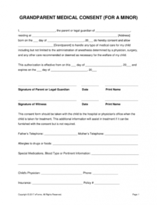 Professional Child Medical Release Form Template Doc Example