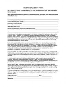 Professional Personal Liability Release Form Template Excel Example
