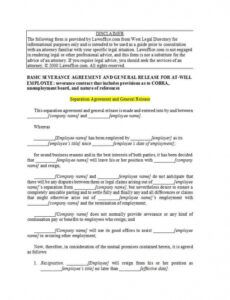Professional Severance And Release Agreement Template Excel Example