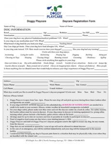 Professional Veterinary Release Form Template